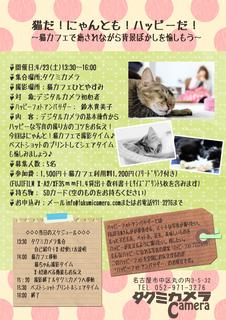 ハピフォトチラシ猫カフェ版.jpg